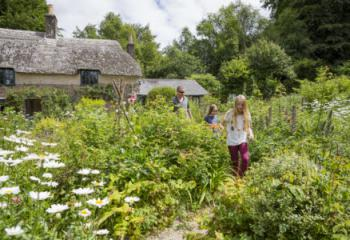 A family exploring the garden in summer at Hardy's Cottage, Dorset.